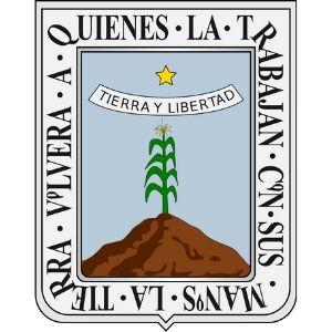 CURP en Morelos