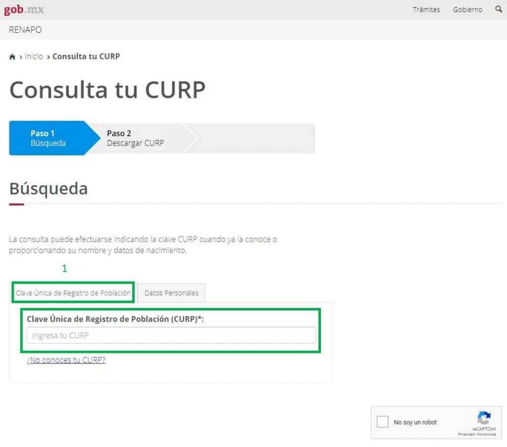 descargar-curp-pdf-introduciendo-clave